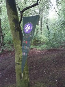 Woodjam John Radford Pennant hanging in Hemyock's natural home 2018